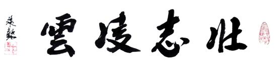 张懿先生书法作品壮志凌云展示