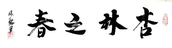 张懿先生书法作品杏林之春展示