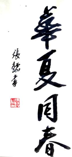 张懿先生书法作品《华夏同春》欣赏